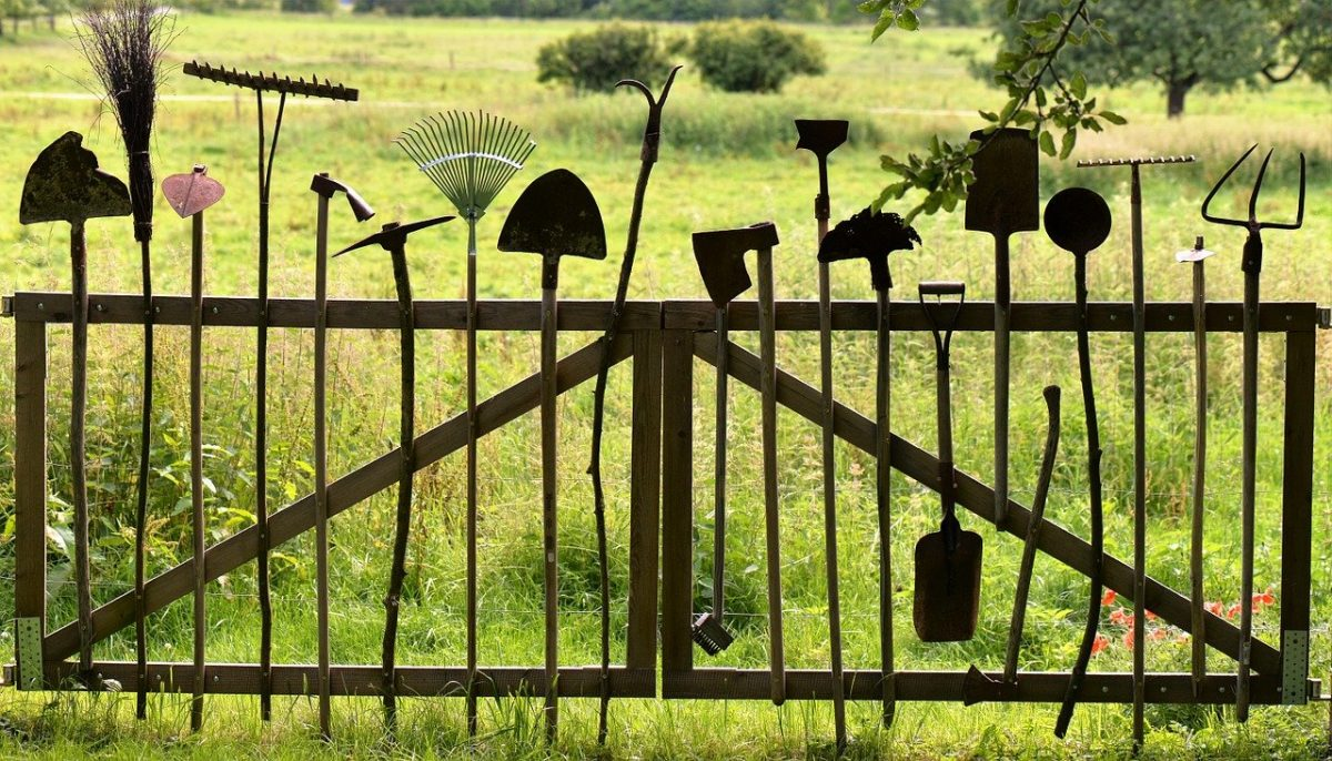 אילו כלי גינון כל גנן חייב שיהיו לו?